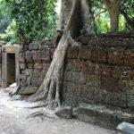 Angkor Thom & Ta Prohm